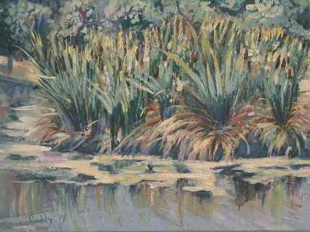 Cattails Oil on Canvas